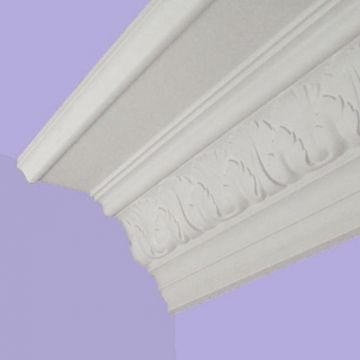 Victorian coving - Shell and leaf