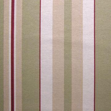 Westminster stripe chintz