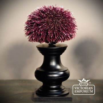 Sea urchin on stand