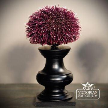 Sea urchin on stand