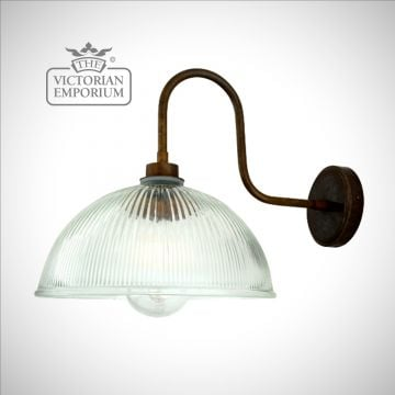Paris Swan Neck Holophane Bathroom or Outdoor Wall Light