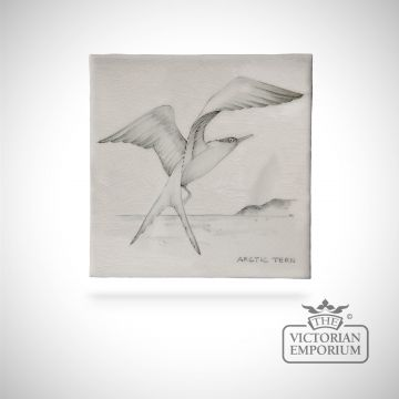 Hand painted tile 13x13cm - Arctic Tern