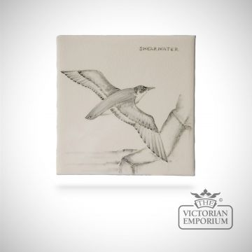 Hand painted tile 13x13cm - Shearwater